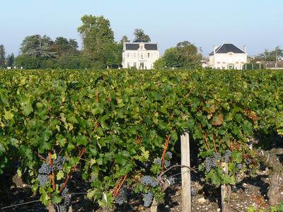 Investir dans un chateau de Bordeaux