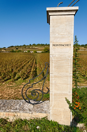 Une Vente De Grands Bourgogne En Septembre