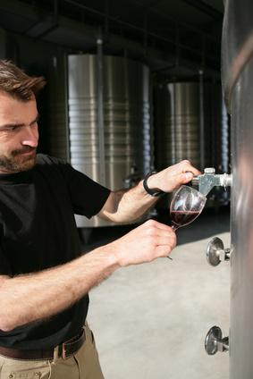Retour sur le production de vin 2013 en Bourgogne