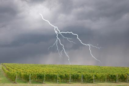 Les Primeurs De Bordeaux S'annoncent Compliquées