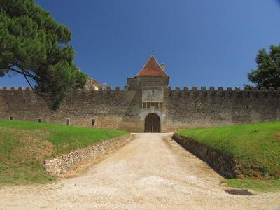 Le château Yquem en pays de Sauternes