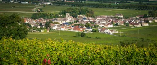 Les prix explosent en Bourgogne viticole