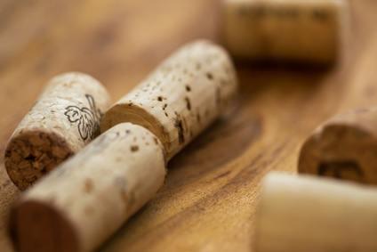 Bourgogne et Bordeaux : deux fameuses régions du vin