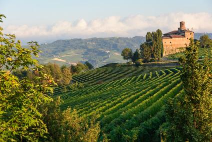 La région des vins du Piémont valorisée par l'UNESCO