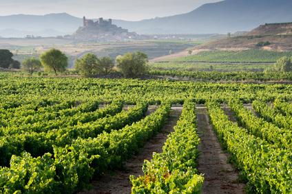 Vin de Rioja en Espagne