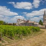 Saint-Émilion et ses vignobles - Marché des grands crus à Bordeaux