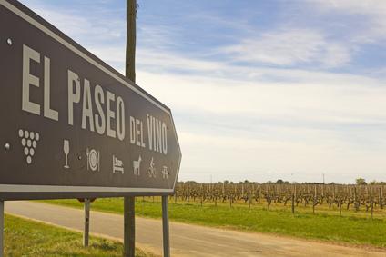 Les vins de nouveau monde : de bons produits d'investissement ?